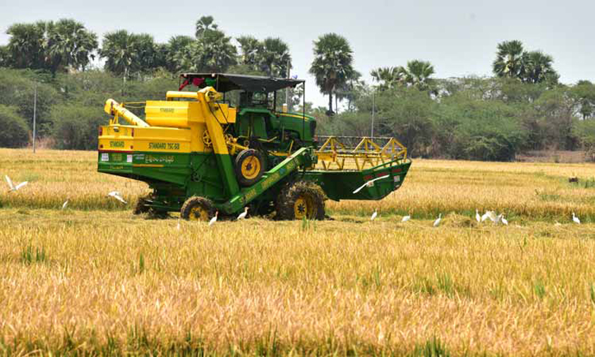 India Govt hikes paddy MSP by Rs 53/qtl for 2020-21
